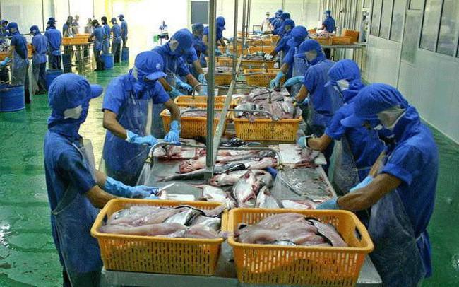 Thủy sản Cửu Long An Giang (ACL): Quý 1/2019 lãi 54 tỷ đồng cao gấp 9 lần cùng kỳ