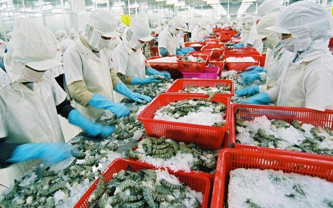 Xuất khẩu tôm Việt Nam tiếp tục giảm trong quý I/2019