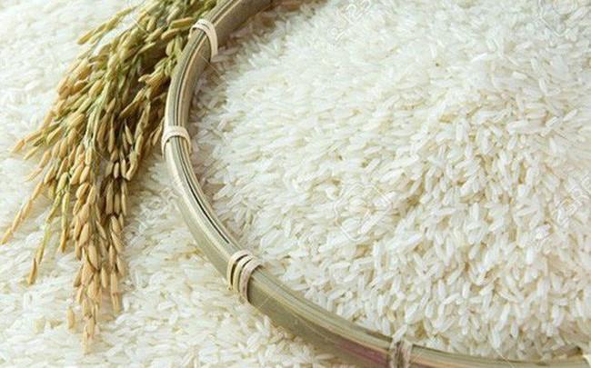 Dự báo toàn cảnh thị trường lúa gạo thế giới năm 2019/2020