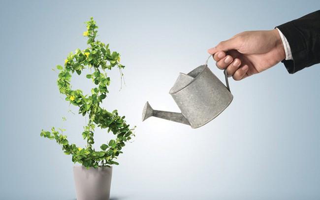 Con đường làm giàu cực kỳ hiệu quả nhưng hầu hết người trẻ tuổi không chú ý đến: Đầu tư ngay trước khi quá muộn!