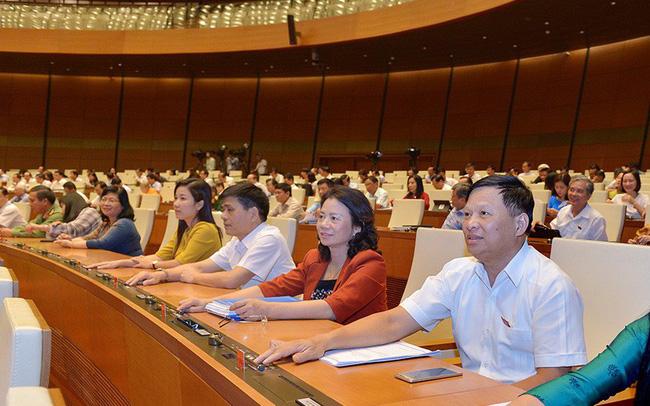 100% ĐBQH bỏ phiếu đồng ý Nghị quyết thành lập đoàn giám sát Phòng, chống xâm hại trẻ em