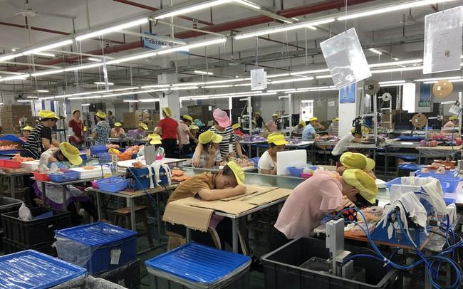 """Nhà sản xuất xe đạp hàng đầu thế giới: Kỷ nguyên """"Made in China"""" đã kết thúc"""