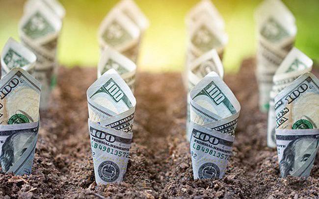 Điểm danh những doanh nghiệp chốt quyền nhận cổ tức bằng tiền, bằng cổ phiếu và cổ phiếu thưởng tuần nay