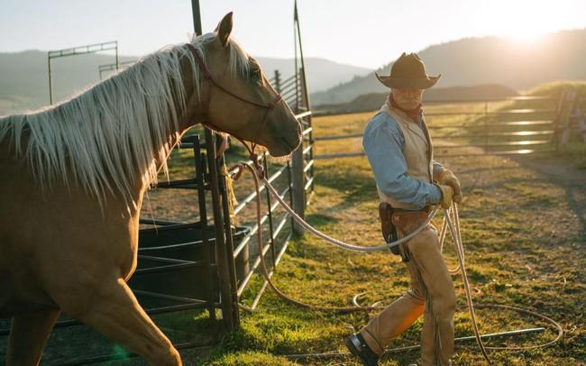 Kỳ lạ giới doanh nhân, CEO đổ xô đi xem huấn luyện ngựa: Đừng nghĩ đây là trò vô bổ, nghệ thuật lãnh đạo đằng sau mới là điều đáng ngẫm!