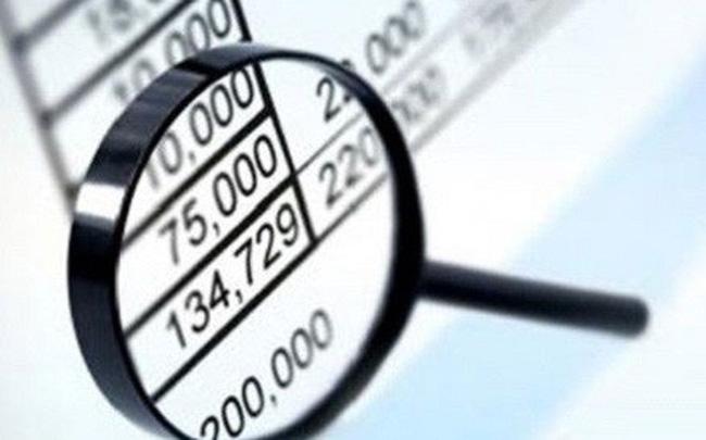 DIC Corp (DIG) điều chỉnh tăng 10 tỷ đồng lợi nhuận sau kiểm toán