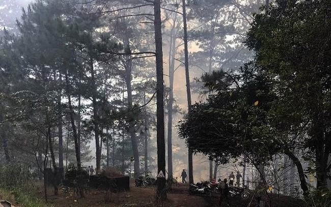 Hàng trăm người đang dập đám cháy rừng trên đèo Prenn ở Lâm Đồng