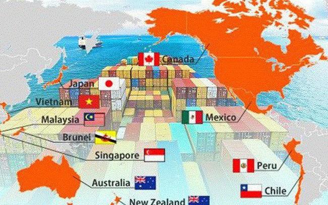 Ra mắt chuyên trang thông tin điện tử về Hiệp định đối tác toàn diện và tiến bộ xuyên Thái Bình Dương