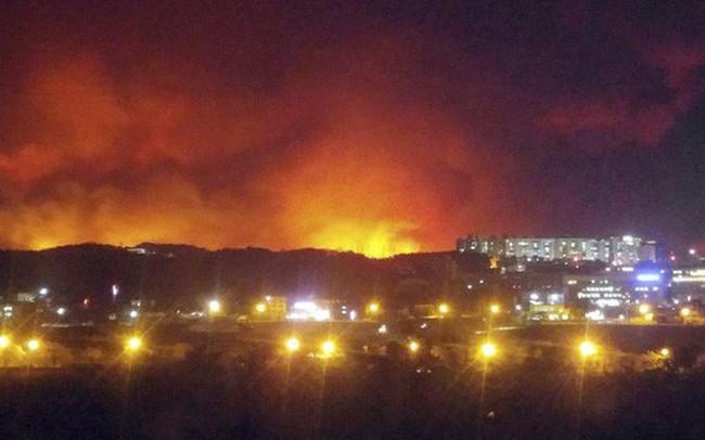 Cháy rừng dữ dội ở Hàn Quốc, gần 5.000 người phải sơ tán