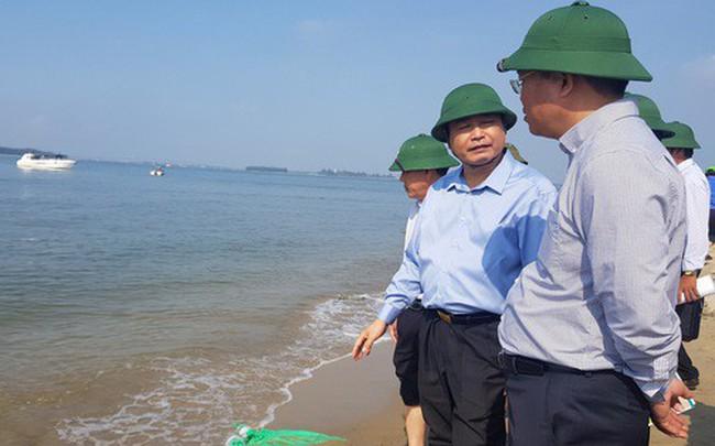 """Cận cảnh """"hòn đảo lạ"""" mới xuất hiện ngoài biển khiến chính quyền Quảng Nam lúng túng"""