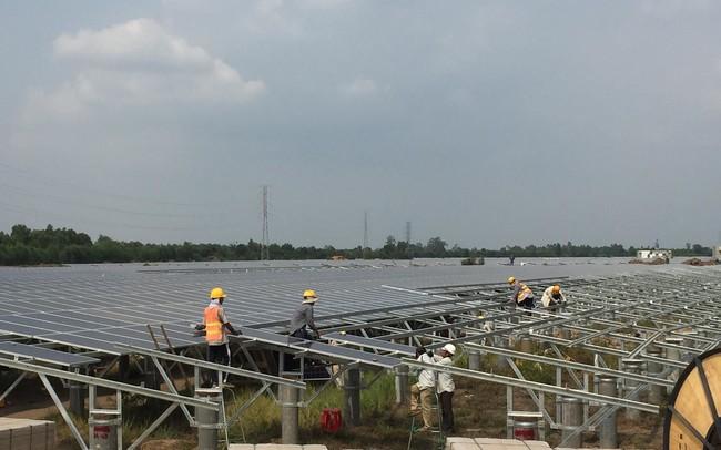 Điện mặt trời ồ ạt hòa lưới, EVN phải thuê chuyên gia 'chữa cháy'