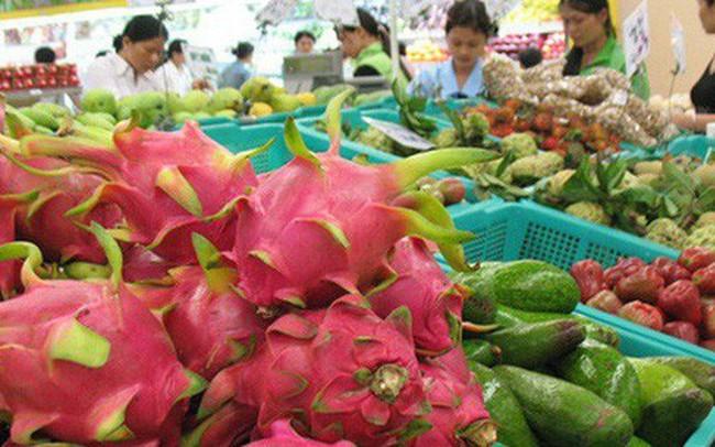 Xuất khẩu rau quả của Việt Nam chạm mốc 1,8 tỷ USD trong 5 tháng