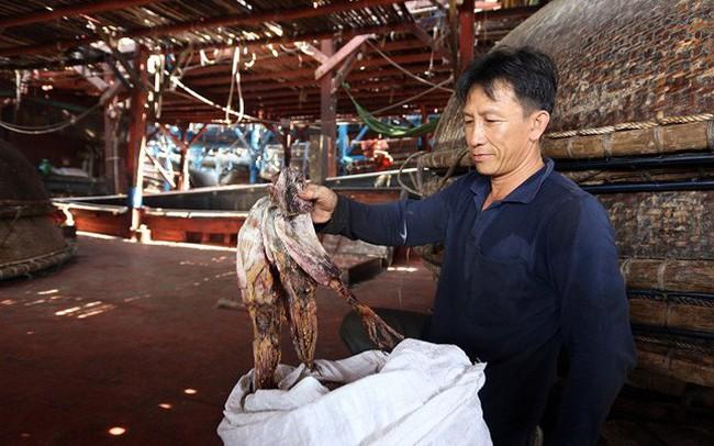 """Quảng Nam kêu gọi hỗ trợ """"giải cứu"""" mực khơi khô"""