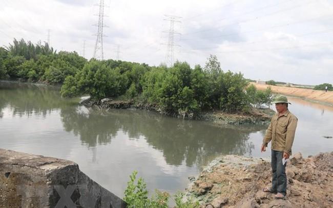 Người nuôi trồng thủy sản khốn đốn vì doanh nghiệp xả thải gây ô nhiễm