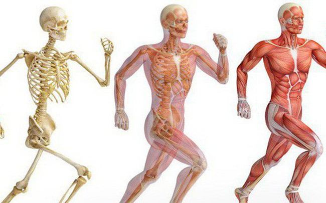 """6 bài tập tốt nhất để trẻ hóa, giúp cơ thể """"bền mãi với thời gian"""": Bạn đã tập thử chưa?"""