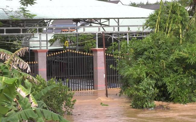 Lũ đổ về đột ngột ở Bình Phước, cảnh sát bám dây giúp dân sơ tán