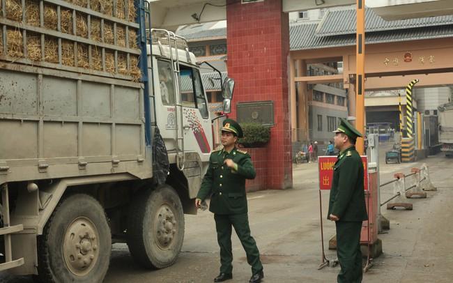 Nông sản tắc ở cửa khẩu Tân Thanh: Vì lẫn chôm chôm Thái Lan?