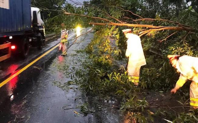 Đà Nẵng: Hàng loạt cây xanh ngã chắn đường, giao thông hỗn loạ  Đà Nẵng: Hàng loạt cây xanh ngã chắn đường, giao thông hỗn loạ photo1572494101317 1572494102279 crop 1572494110885390462294