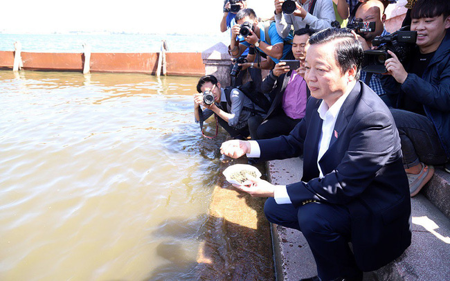 Bộ trưởng Trần Hồng Hà ra hồ Tây cho cá ăn