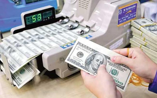 Dự trữ ngoại hối năm 2020 có thể tăng lên 92 tỷ USD?