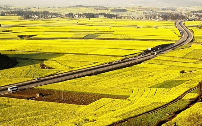Ninh Bình chuyển mục đích sử dụng hơn 78ha đất tại tỉnh Ninh Bình
