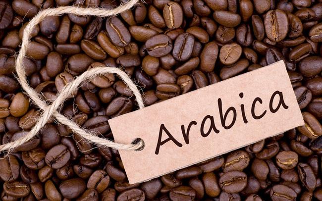 Bộ Công Thương: Giá cà phê arabica sẽ phục hồi trong năm 2020