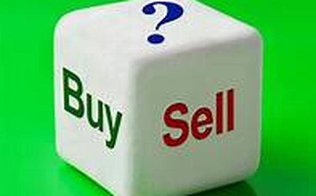 REE, DIC, SJS, NED, CC1, BVN, SWC, TTJ, SZE, UPC, MST, BGW: Thông tin giao dịch lượng lớn cổ phiếu