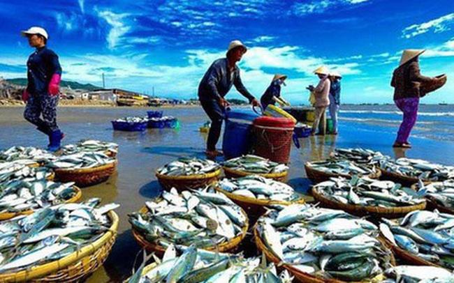 DN thuỷ sản trước EVFTA: Minh Phú dự hưởng lợi nhiều nhất với sản phẩm tôm, ngược lại Vĩnh Hoàn sẽ không có nhiều biến chuyển trong năm 2020