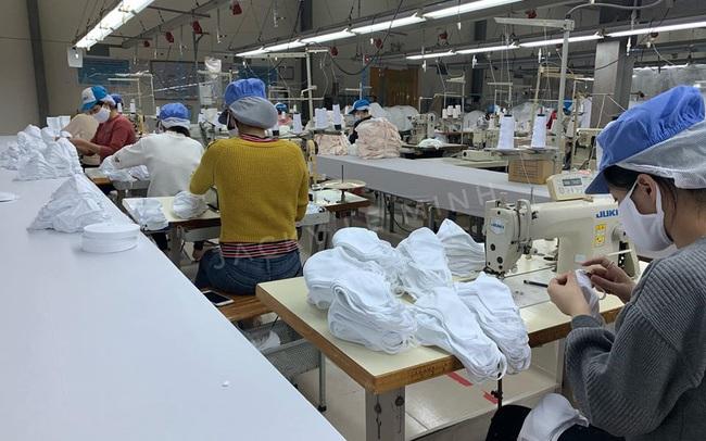 Everon phát miễn phí 50.000 khẩu trang vải, Vinatex ra mắt khẩu trang diệt khuẩn tái sử dụng 30 lần giá 7.000 đồng/chiếc