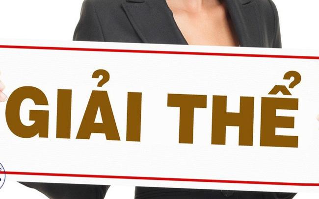 Vì sao doanh nghiệp BĐS thành lập ồ ạt, giải thể đồng loạt?