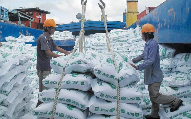 Reuters: Xuất khẩu gạo Thái Lan và Việt Nam gặp khó vì coronavirus