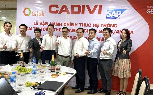 CADIVI chính thức vận hành hệ thống quản trị doanh nghiệp SAP S/4HANA