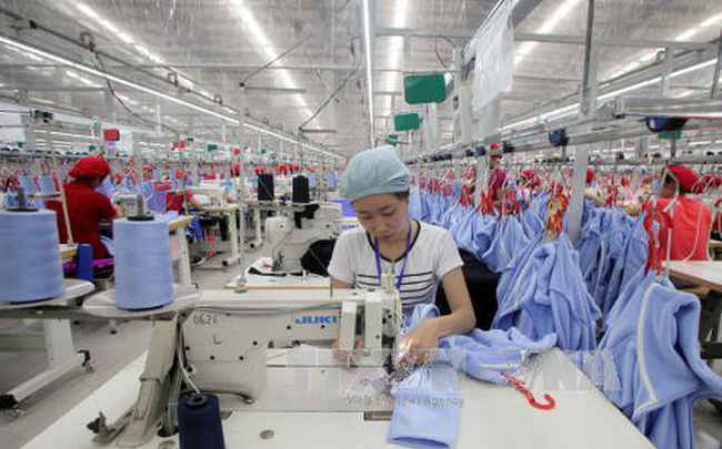 Tổng công ty Đức Giang (MGG): Lên kế hoạch đẩy mạnh xuất khẩu sang Nga, Mỹ, Canada