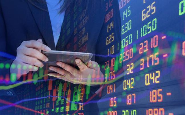 SBT, DGC, HVG, VPB, SVC, HII, SJM, SPV, ELC, KSH: Thông tin giao dịch lượng lớn cổ phiếu