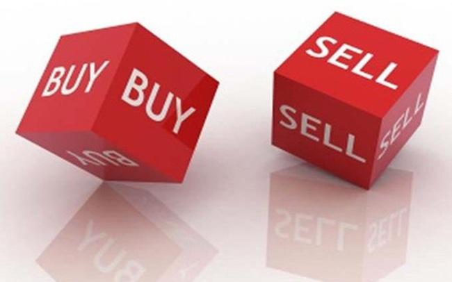 MCH, AAA, LHG, SVC, BWE, DHC, NED, C21, BVN, HLT: Thông tin giao dịch lượng lớn cổ phiếu