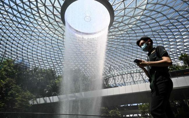 Góc nhìn thời Covid-19 từ Singapore: Con tôi vẫn đi bộ tới trường, Singapore chống dịch ở quy mô toàn xã hội, sẵn sàng truy tố người vi phạm