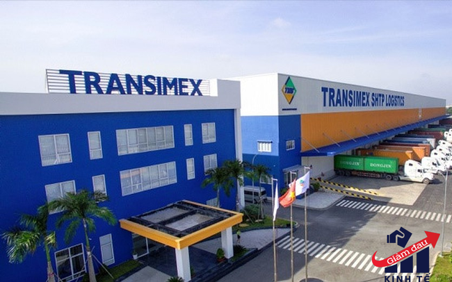 Transimex lên tiếng việc lãnh đạo mắc Covid-19, khẳng định hoạt động kinh doanh vẫn duy trì ổn định