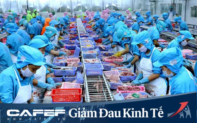 Doanh nghiệp dệt may - thủy sản đề xuất ngừng đóng bảo hiểm, dùng tiền kết dư hỗ trợ cho trả lương, vay không lãi