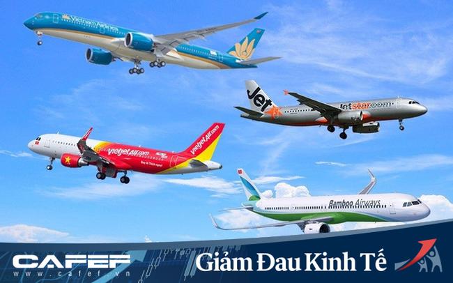 """Cổ phiếu ngành hàng không """"giảm đau"""", đồng loạt tăng trần"""