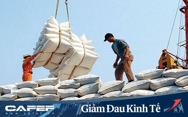 Thủ tướng yêu cầu thanh tra đột xuất về xuất khẩu gạo