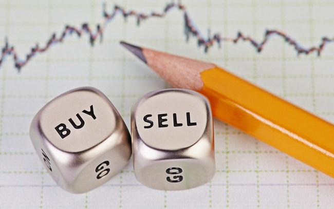 HSG, TDH, CKG, STG, SRF, LM8: Thông tin giao dịch lượng lớn cổ phiếu