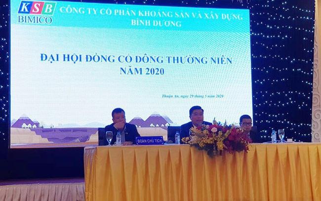 ĐHĐCĐ KSB: Làn sóng đầu tư công và dòng vốn khu công nghiệp mới chỉ là xu hướng, năm 2020 sẽ đối mặt nhiều diễn biến khó lường