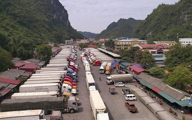 Trung Quốc tăng cường các biện pháp quản lý nguồn gốc, chất lượng thực phẩm, doanh nghiệp Việt Nam cần lưu ý gì khi xuất khẩu hàng hóa?
