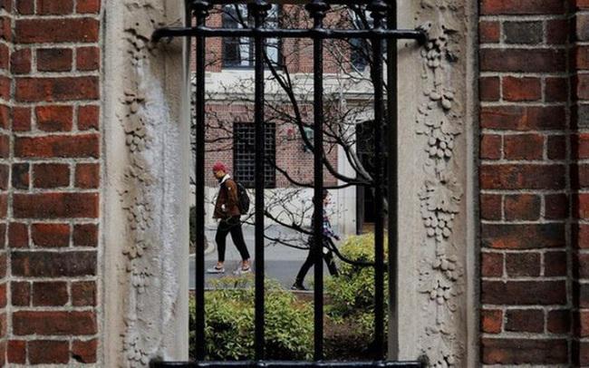 Bị 17 bang kiện, giới chức Mỹ hủy quy định bắt sinh viên nước ngoài rời Mỹ nếu chỉ học trực tuyến