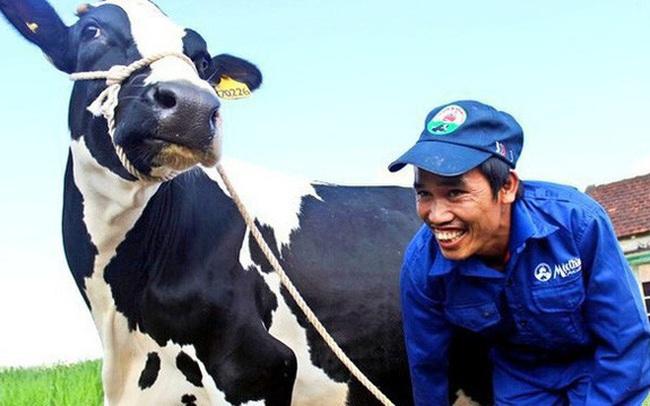 Sữa Mộc Châu: Cổ đông thống nhất kế hoạch chào bán cổ phần trị giá 1.200 tỷ đồng cho Vinamilk và GTN, nới room ngoại và niêm yết HoSE