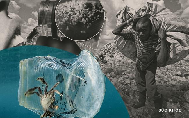 """Chúng ta đang """"ăn"""" đều đặn 2000 mảnh nhựa mỗi ngày, 30 năm nữa số nhựa trên biển sẽ nhiều hơn số cá đang bơi chỉ vì thói quen sống mà 100% người hiện đại đều có"""