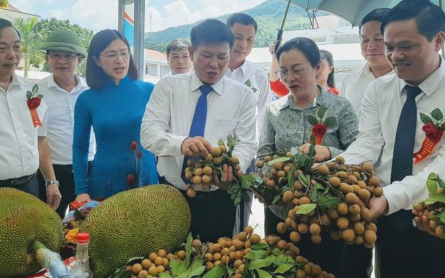 Gần 30 tấn nhãn huyện Sông Mã xuất khẩu chính ngạch sang Trung Quốc