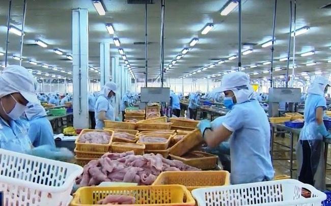 Thị trường Anh nổi bật trong bức tranh xuất khẩu cá tra nửa đầu năm 2020