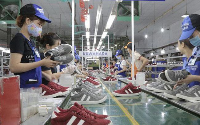 Năm thành công của ngành da giày