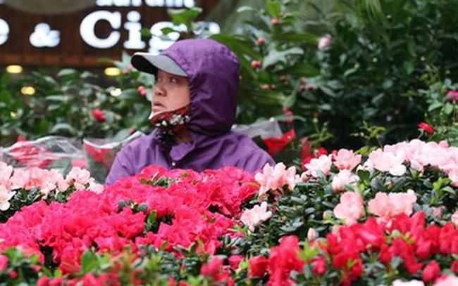 Mặc thời tiết mưa rét, người dân chen chân mua hoa Tết tại chợ hoa lâu đời nhất Hà Nội