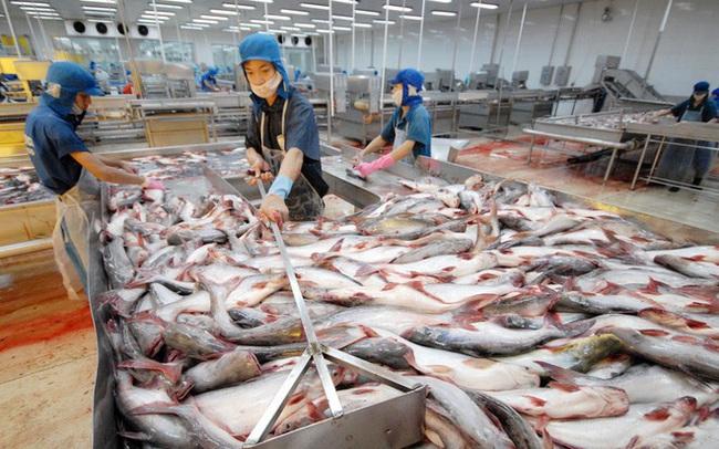 Mỹ điều tra lẩn tránh thuế với tôm, thủy sản Minh Phú bị áp thuế 10%